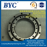 BSHF-25/BSHG-25(CRU25-110) Cross Roller Bearing (64.2x110x20.7mm) for Harmonic Drive Gear